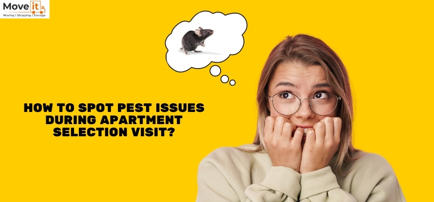 spot pest issues